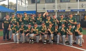 NHHS-Baseball-HWS-2015-Champs