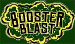Booster Blast Quarterly Newsletter
